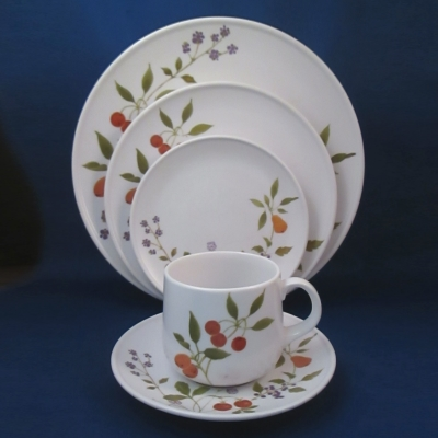 Noritake Berries 'n Such 5 piece place setting