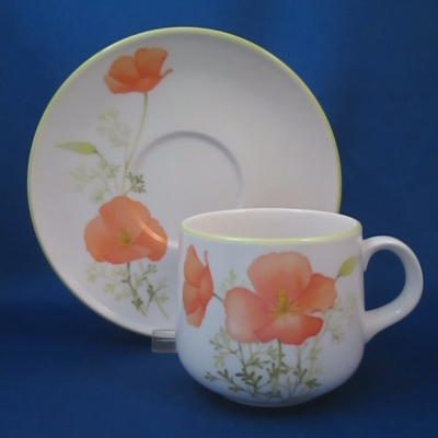 Noritake Bright Side cup & saucer