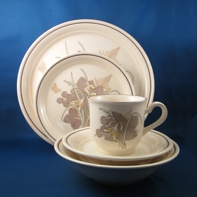 Noritake Wicklow 5 piece place setting