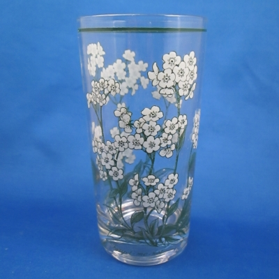 Noritake Mountain Flowers glassware tumbler