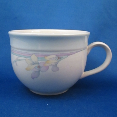 Noritake Rainbow End cup