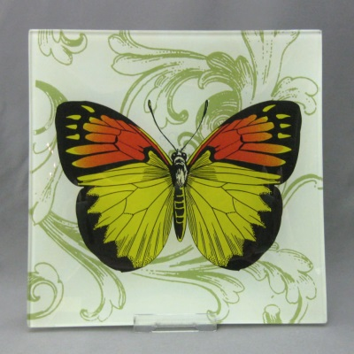 Butterfly plate by Two's Company