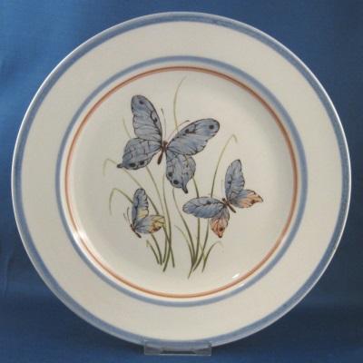 Medina Butterfly